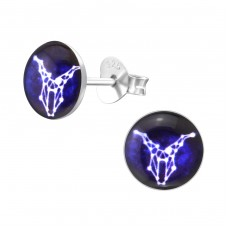 Capricornus Zodiac Sign - 925 Sterling Silver Colorful ear studs for kids A4S31954