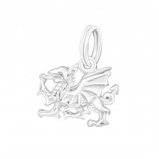 Dragon - 925 Sterling Silver Charms with split ring A4S16998