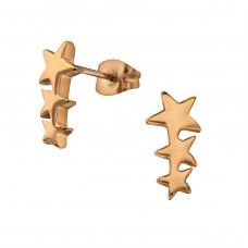 Stars - 316L Surgical Grade Stainless Steel Steel Ear Studs A4S31720